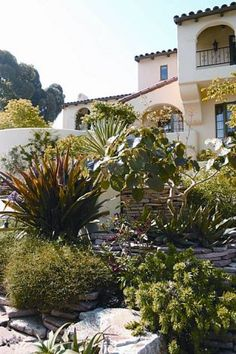 "Plants suited to California's Mediterranean climate are featured in ""California Gardener's Guide, Volume 2,'' by Nan Sterman Photo: California Gardener's Guide"