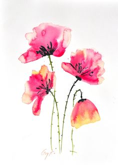 Original watercolor painting Pink poppy flowers, size 21 x 29.7 cm [ A4  ] by Guykantawan on Etsy