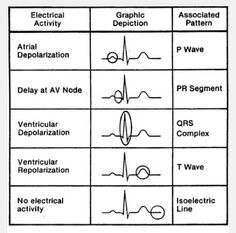 Nurse Nightingale: {ABGs} Arterial Blood Gases: The