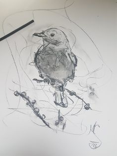 A Bird Bird, Drawings, Sketch, Birds, Portrait, Drawing, Resim, Paintings, Doodle