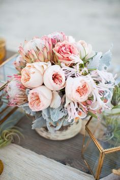 peony and protea -
