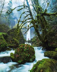 "Elowah Falls, Oregon, USA - ""I stood on the edge of the Falls, listening to the roaring waters downstream."" // @michaelmatti"
