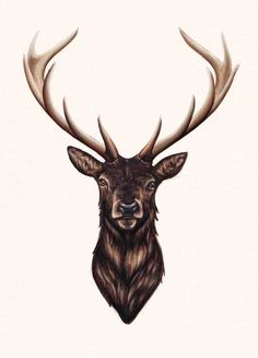 Like the darkness & how intense it is - I would like the antlers to be shaded a bit lighter than the body
