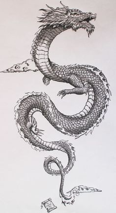 Dragon tattoo design.
