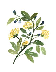 Handmade Watercolor Archival Art Print Sassafras от YaoChengDesign, $25.00