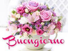 http://ift.tt/2tDWBe0 Frasi di buongiorno sms di buongiorno messaggi di buongiorno buongiorno per te bongiorno per whatsa
