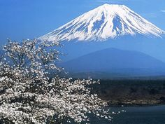 One of my goals - to climb Mt. Fuji... planning a trip for this time next year!