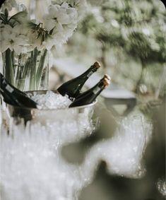 Newstead Wines Pinot Noir Grapes, Wine Sale, Sauvignon Blanc, Tasting Room, Wines, Weddings, Wedding, Marriage