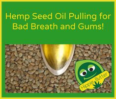Hemp Seed Oil Pulling for Bad Breath and Gums! - Hippie Butter Blog