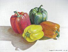 Pepper Still Life - Color Pencil