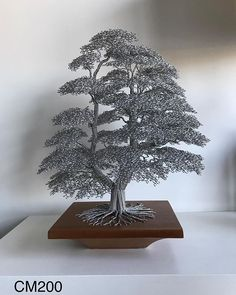 Wire tree sculptures handmade from multiple strands of wire twisted together. Crafted by using bespoke twisting techniques to create individual and unique handmade tree sculptures. Diy Crafts Room Decor, Bonsai Wire, Wire Tree Sculpture, Wire Trees, Geometry Art, Metal Tree, Wood Creations, Wire Crafts, Beads And Wire