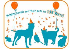 Western Pennsylvania Humane Society has been helping animals and people find each other for 138 years, they need our support and so does the animals! Local Shelters, Interactive Design, Humane Society, Pennsylvania, Westerns, Stuff To Do, Pets, People, Animals