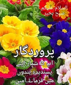 Good Morning Gift, Good Morning Messages, Good Morning Greetings, Good Morning Quotes, Good Morning Images Flowers, Jumma Mubarak Images, Inspirational Quotes, Islamic Dua, Islamic Quotes