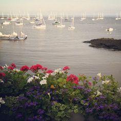 Larchmont Yacht Club. Calm Cradle Photo & Design