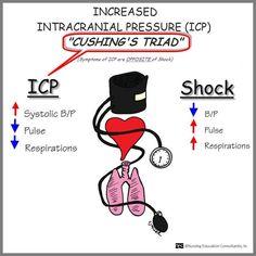 Cushings Triad- paramedic nremt