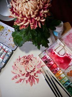Watercolour - Japanese Chrysanthemum by Eunike Nugroho