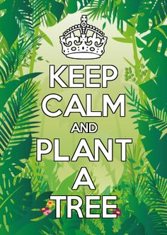 KEEP CALM AND PLANT A TREE