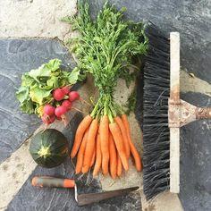 Ir al mercadillo cuenta como dieta sana, pero ¿limpiar el jardín cuenta como ejercicio? #ecomercadillo #verduritasfrescas #ecomarket #vegetables ¿cuenta o no cuenta @dietasanayejercicio ? Porque tengo una paliza encima que paqué!