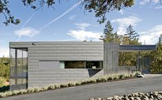 small house in an olive grove | cooper joseph studio | geyserville, ca