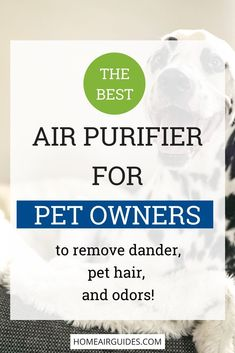 Are you a pet owner suffering from allergies? Wishing your pet would stop shedding hair all over your furniture? Tired of dealing with pet odor and smells? Learn how to deal with this and have cleaner air at the same time with the best air purifier for pe Pet Insurance Reviews, Pet Health Insurance, Best Pet Insurance, Insurance Website, Life Insurance, Cat Allergies, Cat Care Tips, Pet Care, Puppy Care