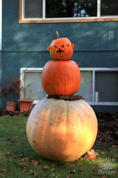 Get some inspiration for quirky fall decorating with pumpkins that will get you outdoors, playing with design and celebrating the season.