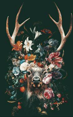 Deer Wallpaper, Animal Wallpaper, Deer Art, Tatoo Art, Tattoo, Art Et Illustration, Animal Photography, Cute Wallpapers, Cool Art