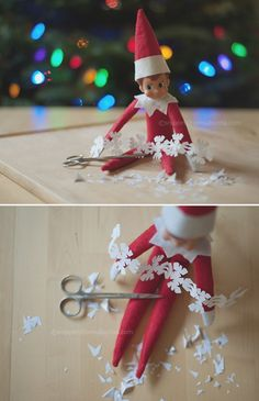 Allison Zercher's Elf on the Shelf personal project.