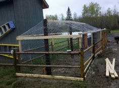 Here is a quick inexpensive DIY chicken coop we built. When we ordered our chickens we hadn't really thought much about a coop at that point. Chicken Fence, Cheap Chicken Coops, Chicken Coop Decor, Diy Chicken Coop Plans, Best Chicken Coop, Chicken Coop Designs, Building A Chicken Coop, Chicken Runs, Chicken Shop