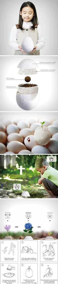 For people who've lost a pet, it can be a difficult phase to get through. Reborn is an egg that contains soil, a seedling, and the departed pet's ashes wrapped within a porous, fragile shell. The shell is placed in the soil and in no time, the seedling hatches out of it, becoming a reincarnated embodiment of the deceased pet's spirit.
