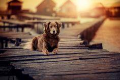 sundown @ bokod by Anne Geier on 500px