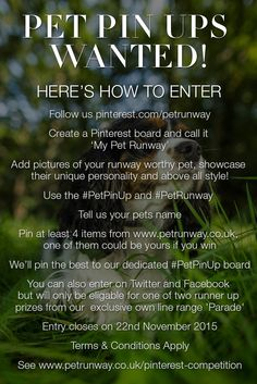 Pinterest Competition! Create your own My Pet Runway board #MyPetPinUp and include this pin to be in with a chance of winning an item from Pet Runway's collection #win #competition - Entry closes on Sun 22nd November, start creating boards now. #PetPinUp #PetRunway Terms & Conditions here