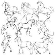 Best Photos of Horse Drawing Tutorial - How to Draw Horse Anatomy, Drawing Horses Step by Step and Basic Horse Head Drawing Horse Drawings, Art Drawings Sketches, Animal Drawings, Easy Drawings, Horse Drawing Tutorial, Horse Sketch, Drawing Reference Poses, Drawing Techniques, Drawing Tips