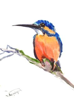 Common Kingfisher Original watercolor painting 12 by ORIGINALONLY