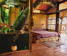 World's Coolest Tree-House Hotels: Tranquil Resort