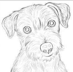 как нарисовать собаку: 39 тыс изображений найдено в Яндекс.Картинках