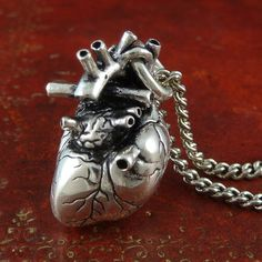 anatomically correct silver heart on a chain. magical