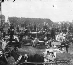 Spring Festival meeting at Punchestown is a major event in the Irish racing calendar considered to be one of the world's finest national hunt race courses. Irish Racing, Chuck Wagon, Old Photos, Antique Cars, Texas, Museum, Big, Ranch Life