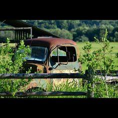 Rusty trucks See It, British Columbia, Trucks, Beautiful, Track, Truck, Cars