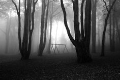 moody clearing and fog, child's swingset
