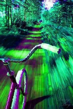"Albert Hoffman's curiosity got the best of him for 3 days later, just before lunch, he intentionally ingested orally 250 micrograms of the LSD. As he started to feel the effects come over him , he decided to ride his bicycle home. This is the 1st LSD trip for mankind.... Albert called this day ""Bicycle Day"". April 19, 1943"