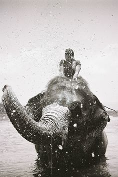 ♂ Black & white photography man with elephant SPLASH HAPPY
