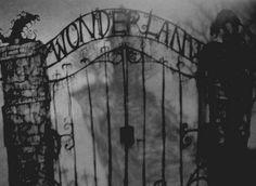 Wonderland?