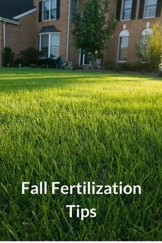 Give your lawn the nutrients its needs. An application of Milorganite in early fall (Labor Day) provides your lawn with the nutrients it needs to recover from summer stress and strengthen the root system. Learn more fall lawn tips here.