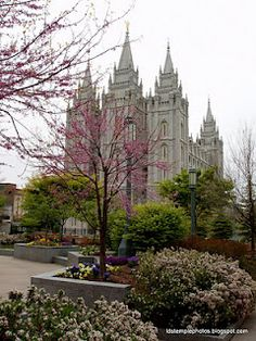 Mormon temple in Salt Lake City, Utah. Photo I took last spring. Nothing like spring on temple square. You can share your great photos with the LDS Church and with other members at Create.lds.org