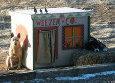 Weezer & (friend) Trigger - Look at sizes for each dog for building instructions