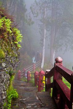 Taktshang Walkway, Bhutan  KEEN TO BE LOST here!!