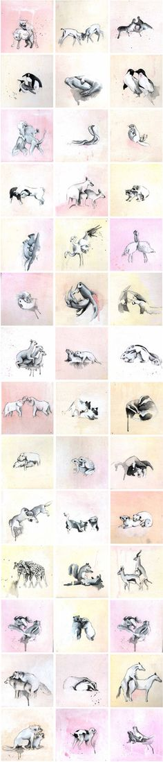 Animal Acts, by Vancouver based artist Helen Eady.