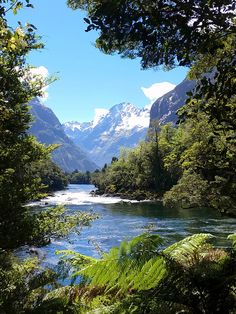 Milford Track, Fiordland National Park New Zealand Scenery Pictures, Nature Pictures, Beautiful World, Beautiful Places, Milford Track, New Zealand Landscape, Beach Scenery, Mountain Landscape, Vincent Van Gogh