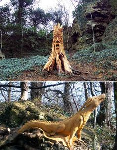 Forest Creatures by Tommy Craggs    (images via: inhabitat)    Amazingly detailed forest creatures that sprouted up in the woods of Karnesborough, North Yorkshire, UK puzzled local residents, until a local chainsaw artist came forth to claim credit for the sculptures. Tommy Craggs carves tree trunks, stumps and branches into mythical creatures like dragons.