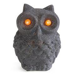LED Glitter Owls at Big Lots.